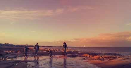 four people walking on seashore during golden hour